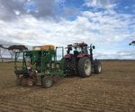 Sowing plots with a ProTrakker 400DX 4 trial on row, edge row, mid-row and 3 yr split